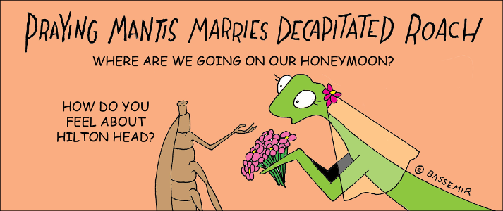 P.Mantis.Honeymoon.png