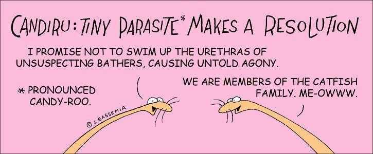 Parasites makes a resolution
