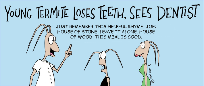 Termite.Lose.Teeth.png