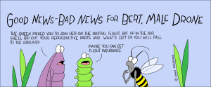 good new bad news for the bee