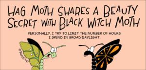Moth.Hag.png