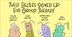 beetletherapy-png