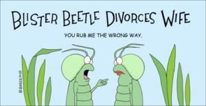 beetle-divorce-png